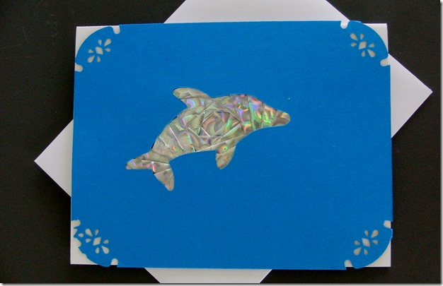 Blog Dolphin