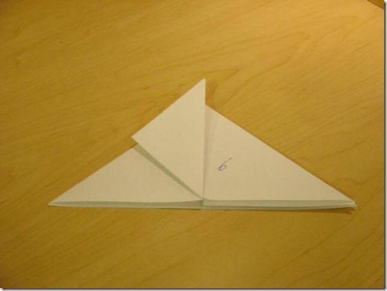 Fold 006